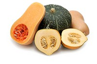 Squashes, Squash, Buttercup, Acorn and Butternut varieties
