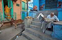 Street  Jodhpur  Rajasthan  India.