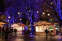 Potsdamer Platz, Berlin, Germany, Europe  Christmas market stalls at night