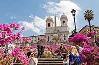 Pots of azaleas in blossom, Spanish Steps, Scalinata della Trinita dei Monti, Piazza di Spagna, Rome, Italy.