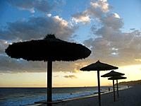 Umbrellas on the beach, Altafulla, Tarragona, Spain	1015