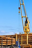 Ship mounted crane lifting logs onto log ship for transport to China; big rig truck delivering more logs; Port of Port Angeles, Washington USA.