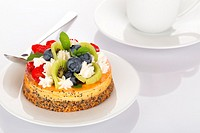 Cheese-cake with strawberry, blueberry, kiwi and cream on white plate.