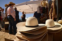 The Roundup & Open House, a celebration of the cowboy and a day long Western experience, is sponsored by the Empire Foundation at the historic Empire ...