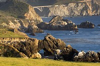 Classic view of the rugged coastal headlands of Big Sur and the Bixby Bridge, California.