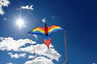 Macaw Parrot Kite flying against the sun with a blue sky in Toronto.