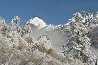 Macizo del Kanchenjunga, 8586 m (Sikkim, India).