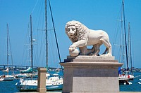 The Bridge of Lions, St. Augustine Florida, is guarded on each side of the road by a sculpture of a marble Medici lion. This Medici Lion is on the sou...