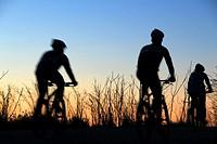 Cyclists riding in the sunset. Passeig de les Aigües; Collserola mountain, Barcelona, Catalonia, Spain.