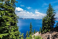 Crater Lake framed by pine trees. Crater Lake National Park, Oregon, United States.