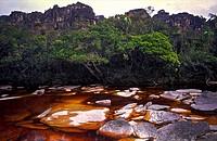 Tea-colored stream on the Auyantepuy summit. Canaima National Park, Bolivar State. Venezuela.