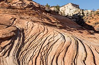 Layers of sandstone lead the viewer toward a distant peak in Zion National Park.