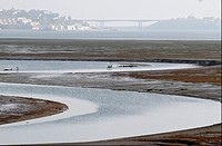 Natural marshes of Rio Eo, in Ribadeo i, Lugo. In the background the bridge of Los Santos, linking Asturias d, Galicia i.