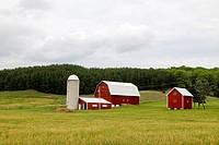 Michigan Farm, USA