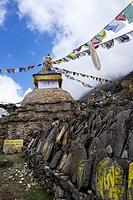 Stupa and Flags, Nepal