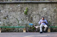 Older gentleman looking at his smart phone while siting on a bench.