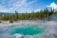 Pool in Emerald Spring - hot spring located in Norris Geyser Basin of Yellowstone National Park.k, Wyoming, USA.