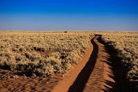 The road to nowhere. Sand trail in the Namib Rand Nature Reserve. Namib Desert, Namibia.