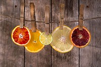 Presentation of a series of slices of citrus fruit to highlight the various colors.
