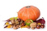 Pumkin, chetsnuts nuts, and walnuts