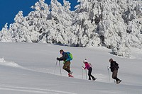Skiers, Ski Touring, Navacerrada, Guadarrama National Park, Madrid, Spain, Europe.