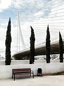 Assut d´Or brigde at the City of Arts and Sciences complex, made by Santiago Calatrava, Valencia, Spain.
