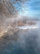 Hoarfrost on trees and weeds around Lake Harriet in Minneapolis, Minnesota USA