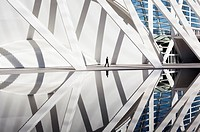 Water reflection of the Prince Philip Sciences Museum, designed by Santiago Calatrava. Valencia, Spain.