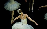 Odette flys in the performance of Swan Lake of Pyotr Tchaikovsky and Petipa.