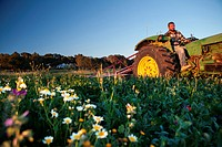 A young farmer working in a field, during spring, in the outskirts of San Ferran. Formentera (Balearic Islands).