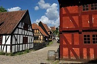 Den Gamle By or The Old Town, open air town museum that consists of 75 historical buildings collected from 20 townships in all parts of the country (o...