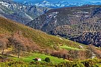 Cordillera Cantábrica. Picos de Europa National Park. Leon Province. Castilla y Leon. Spain.