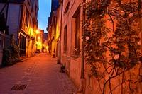 Chinon, Old Town, Dusk, Indre-et-Loire, Pays de la Loire, Loire Valley, UNESCO World Heritage Site, France.