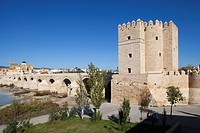 Torre de la Calahorra and Roman bridge, Cordoba, Andalucia, Spain, Europe.