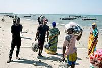Bagamoyo Fish Market. Surroundings of Dar es Salaam. Tanzania.