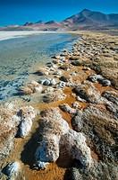 Santa Rosa Lagoon, Nevado Tres Cruces National Park, Region III of Atacama, Chile, South America.