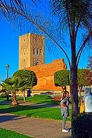 Hassan Tower at Sidi Makhlouf Place, Rabat, Morocco.