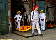 Guild cheese porters carry cheese truckles on a wooden stretcher from the balance to the market, cheese market of Alkmaar, Netherlands.
