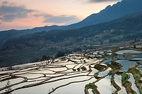 Sunrise over YuanYang rice terraces in Yunnan, China, one of the latest UNESCO World Heritage Sites.