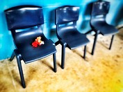 flowers abandoned on a chair.