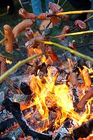 People Grilling Sausages over Campfire Outdoors.