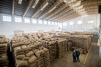 A large warehouse space is filled with sacks of grains in New Delhi, India.