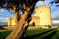 Castle of Arevalo, Avila, Spain.