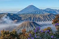 Bromo Tengger Semeru National Park, Java, Indonesia, Asia.