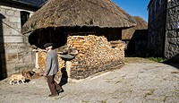 Traditional Horreo with teak roof and wood stacked to prevent it from getting wet in Piornedo de Ancares. The Ancares. Lugo. Galicia. Spain.