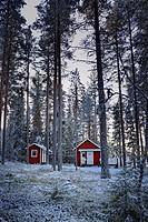 A wooden cottage is standing at snowy forest. Bredbyn, Västernorrland, Sweden.