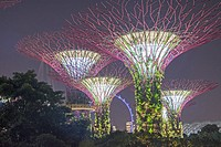 Supertrees at Gardens by the Bay South, Marina Bay, Singapore.