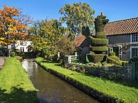 Cottages and Topiary Chicken by the Stream in Bishop Monkton North Yorkshire England.