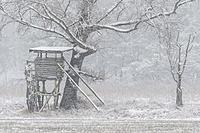 Hunting blind in winter at snowfall, Hesse, Germany, Europe.