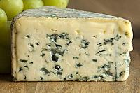 Piece of French Bleu d'auvergne cheese close up.